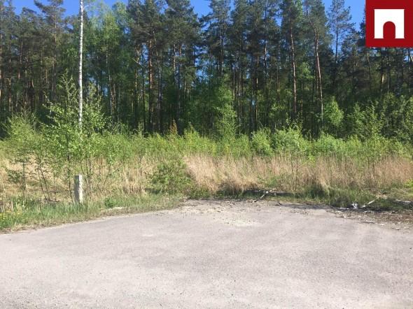 Müüa maa Niida tee 22, Sauga vald, Pärnu maakond